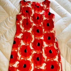 Dress Barn Poppy Sheath Dress and Shrug